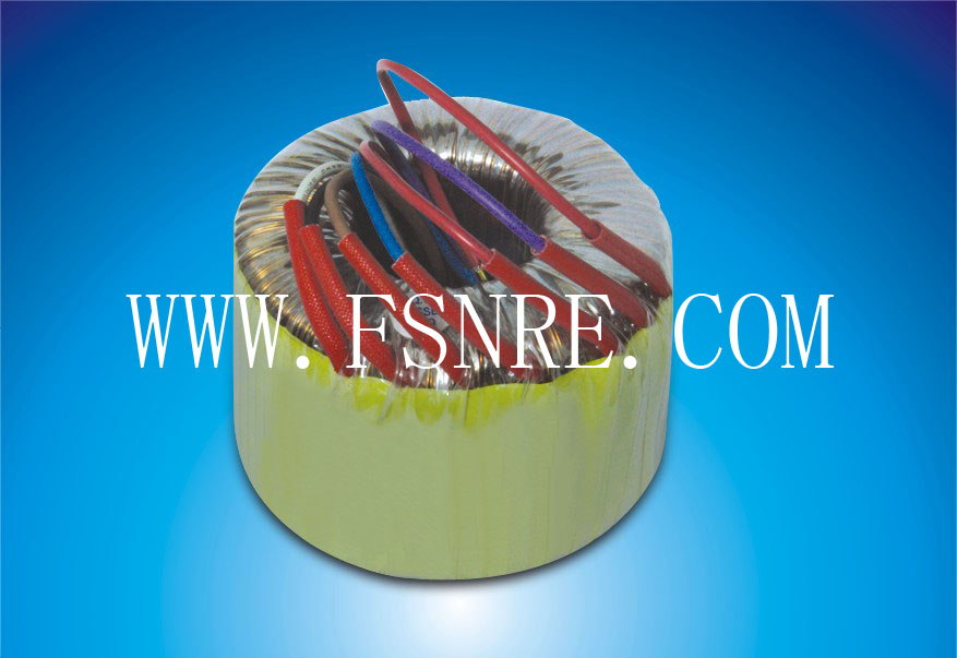 Toroidal Power Transformer For Household Audio Amplifiers