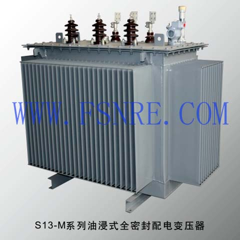 S13-M series oil-immersed fully sealed distribution transformer